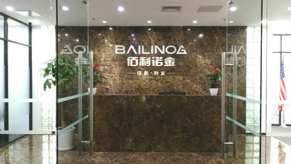 北京佰利诺金出入境服务有限公司