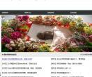 宠物殡葬网